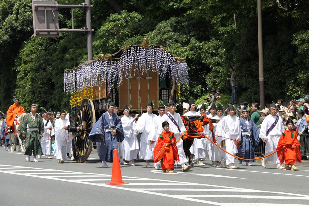 葵祭 牛車の藤は、藤原氏のシンボルの藤の花房を使っています。今は造花です。は... 葵祭2010