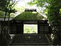 法然院と金戒光明寺