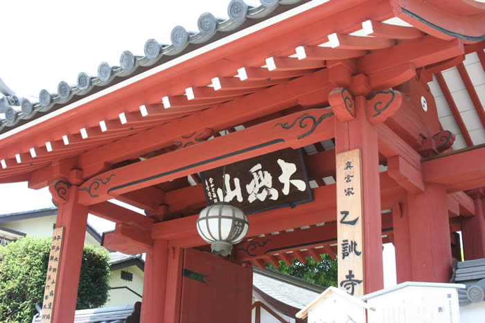 乙訓寺のボタン