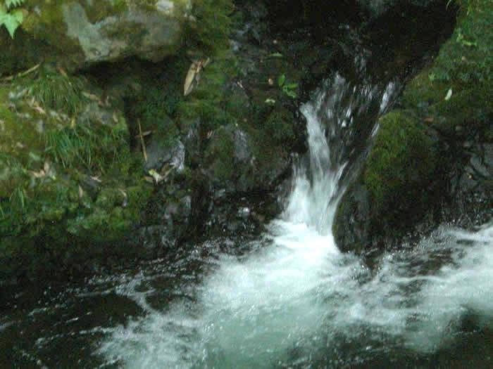 雲ヶ畑の料亭の川床
