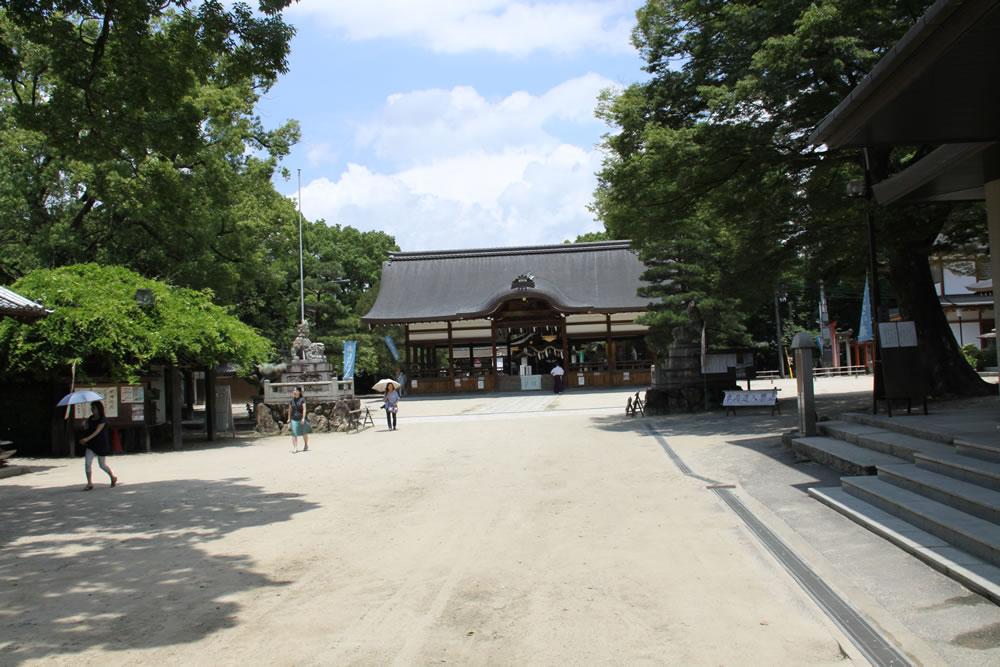 藤森神社のアジサイ